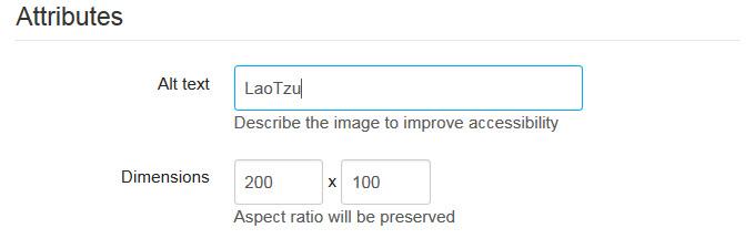 Type a description in the Alt text box
