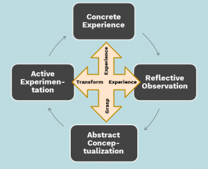Four stages of a learning cycle