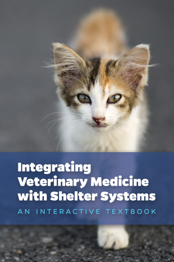 Cover image for [DRAFT] Integrating Veterinary Medicine with Shelter Systems