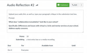 Reflection Instructions in Canvas
